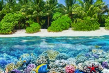 Fedezd fel a varázslatos Maldív-szigeteket