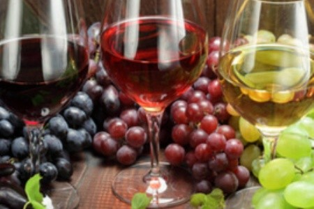 A legjobb magyar borok nyomában