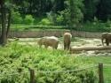zoo Zlín