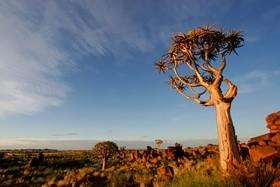 Namibia, Botswana, Zimbabwe körutazás
