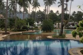 8 Éj Ko Chang (Chang Park Resort) + 3 Éj Bangkok (Bangkok Palace)