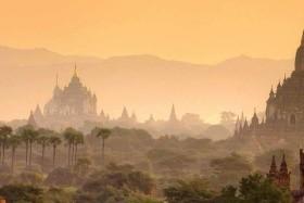 Sáfrány Burma
