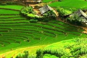 Golden Cyclo Hotel, Holiday Sapa Hotel, Asia Hotel Hue, Thuy Dong 3 Hotel, Majestic Hotel, Ruby River Hotel