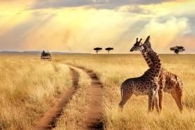 Tanzánia Üdüléssel Zanzibáron - Csoportos Körutazás