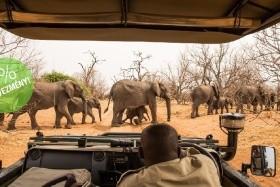 Botswana És Zambia – Csoportos Körutazás