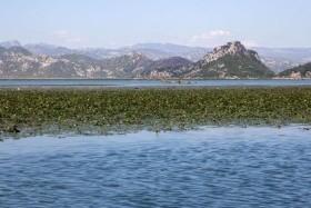 Montenegró-Havas csúcsoktól a napsütéses tengerpartig