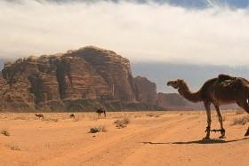 Jordánia: Tavaszi utazás Petrába - BETELT, várólista