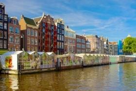 Tulipánvirágzás Hollandiában