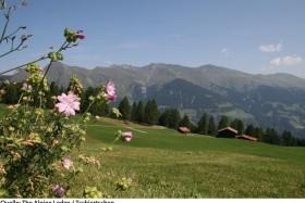 The Alpina Lodge