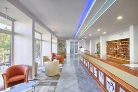 Hotel Mimosa - Lido Palace