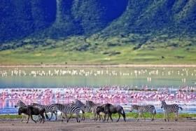 Téli Pihenés A Mesés Zanzibáron És Szafari Észak-Tanzánia Nemzeti Parkjaiban