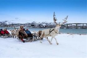 Az Északi Fény Nyomában - Csoportos Utazás Magyar Idegenvezetéssel Tromsøbe 2020.02.20-23.