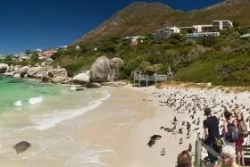 Bortúra Dél-Afrikában