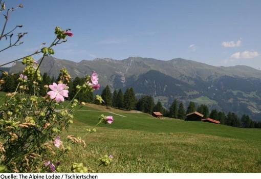 The Alpina Lodge (Tschiertschen)