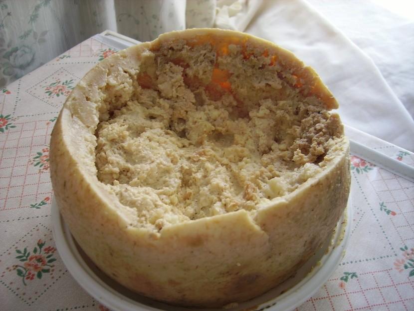 Casu Marzu Olaszország nemzeti étel