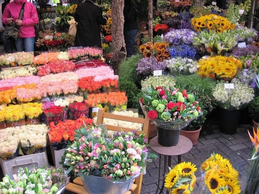 Singel virágpiac virágok virágbolt tulipán ha