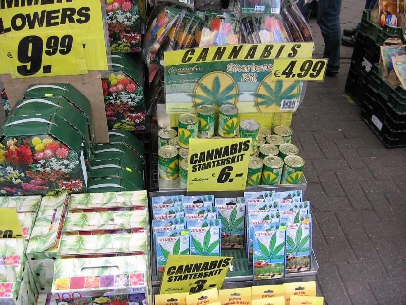 marihuána termesztés virágbolt Amszterdam