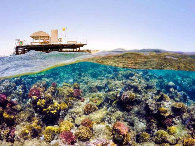 tenger búvárkodás sznorkelezés korall