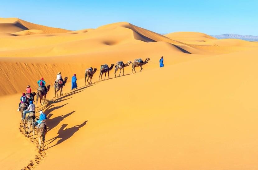 Tevekaraván a Szaharában homok sivatag