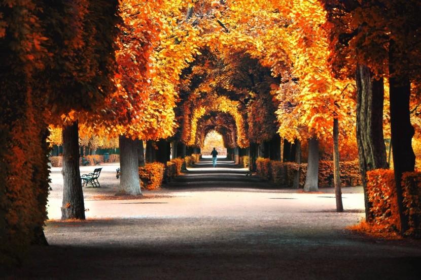 Bécs ősszel