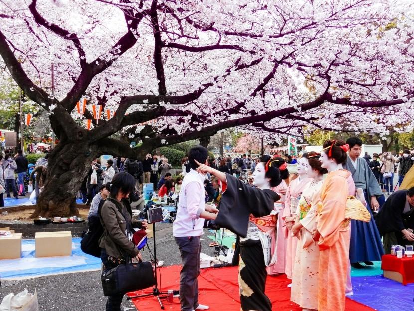 Hanami az Ueno parkban