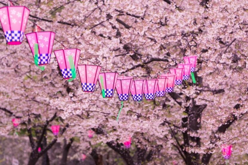 Lampionos díszítés Japánban