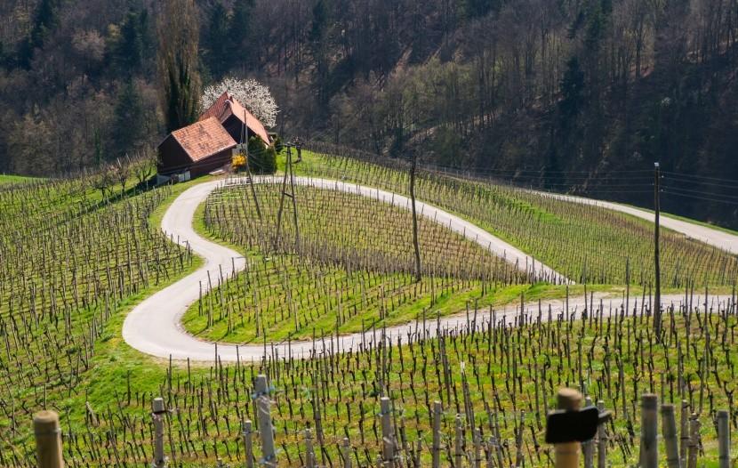 Szív alakú országút Szlovéniában