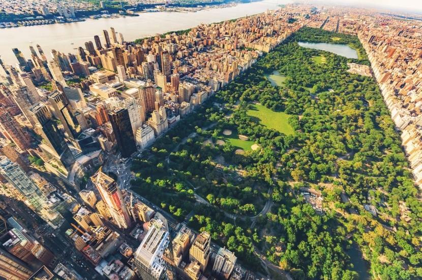 Central Park New Yorkban