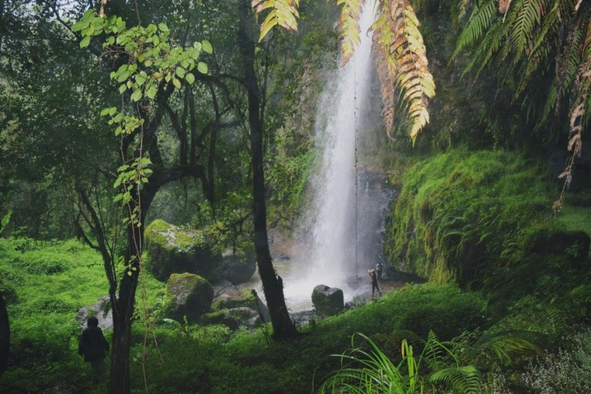 Aberdare Nemzeti Park