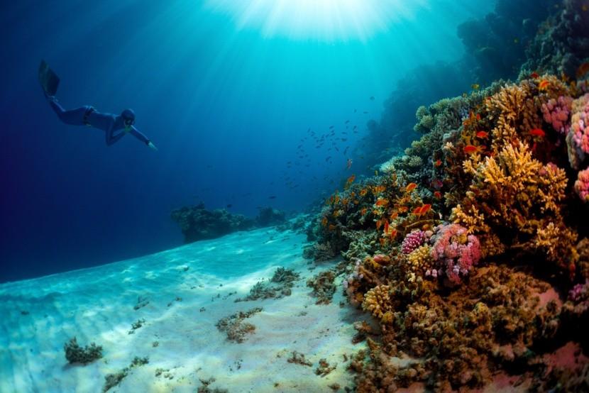 Hurghada, búvárkodás a Vörös-tengerben