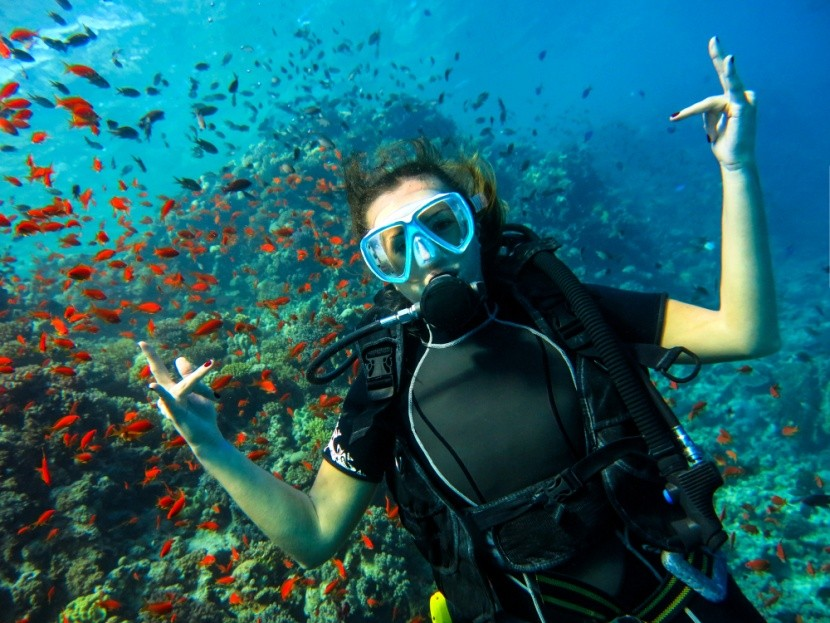 A Vörös-tenger élővilága, Egyiptom