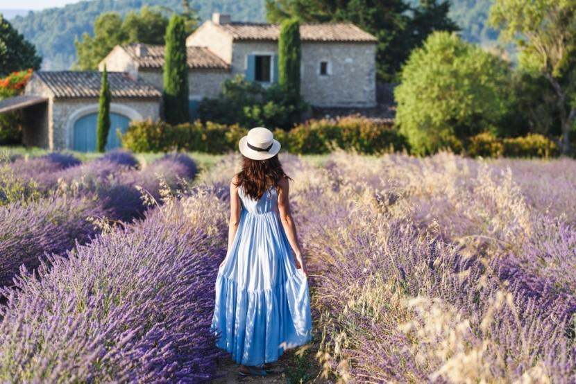 Provence levendula-mezői