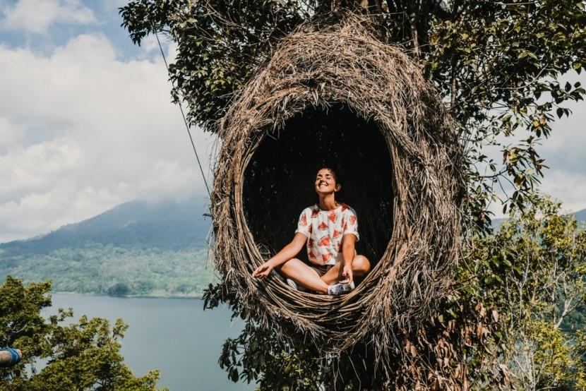 Meditáció madárfészekben