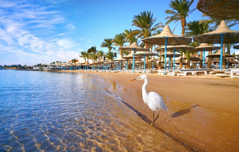 Hurghada mesés strandjai