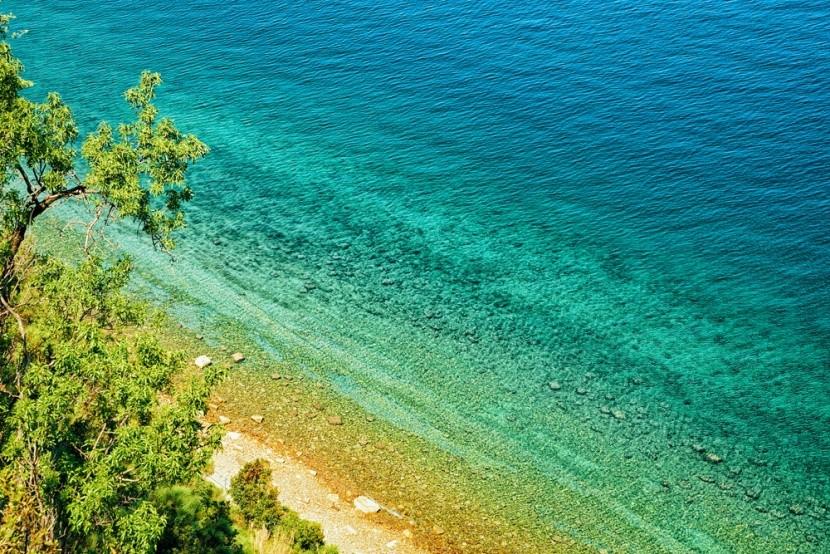 Strunjan Nemzeti Park, Adriai-tenger